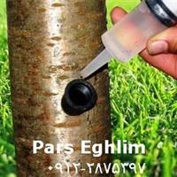 تزریق مستقیم کودمایع به تنه درخت بدون هدررفت و باصرفه