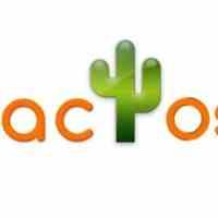 فروش عمده و جزئی پوشاک برند زنانه Kaktus Moda  وJOYMISS