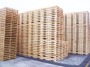 تهیه  ،توزیع وساخت انواع پالت با بهترین کیفیت