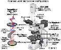 تجهیزات آزمایشگاهی آون و انکوباتور