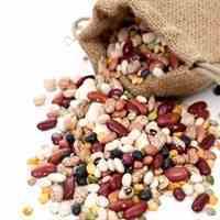 خرید و فروش عمده حبوبات استان فارس