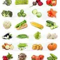 فروش بذر سبزیجات