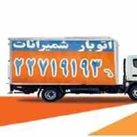 باربری در تهران