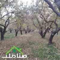 خرید فروش باغ هکتاری در ملارد کد1209