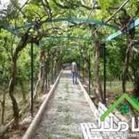 فروش باغ ویلای بزرگ در فردوسیه شهریار کد1077