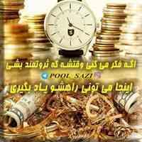 آکادمی پولسازی