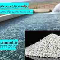 فروش زئولیت پرورش ماهی