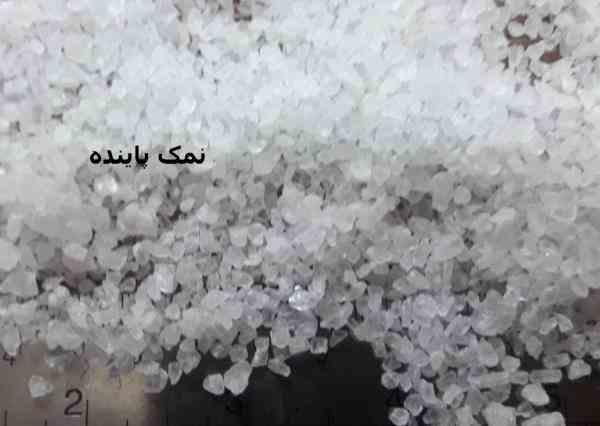 شرکت نمک پاینده