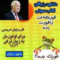 دانلود رایگان کتاب صوتی قورباغه ات را قورت بده به زبان ترکی(آذری)