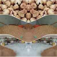 فروش انجیر استهبان(صادرات و عرضه داخلی)