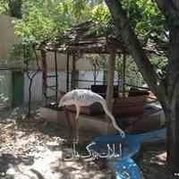 فروش باغ ویلا در محمدشهر