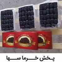 فروش عمده خرما در تهران