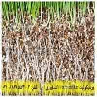 ورمیکولیت(Vermiculite) و تاثیر آن بر کشاورزی