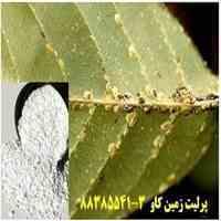 مزیت های استفاده از پرلیت در تولید سموم و آفت کش ها Perlite