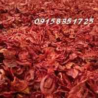 فروش گوجه خشک و پودر گوجه