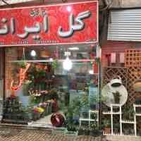 گل فروشی مشهد ( گل ایرانا )