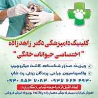 کلینیک دامپزشکی در اهواز(دکتر زاهدزاده_اختصاصی حیوانات خانگی و پرندگان)