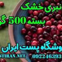 فروش کرنبری خشک نیم کیلویی فروشگاه پست ایران