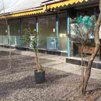 فروش باغ رستوران و کافه سنتی