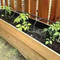 آبیاری هوشمند گیاهان