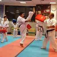 آموزش تخصصی کاراته آزاد