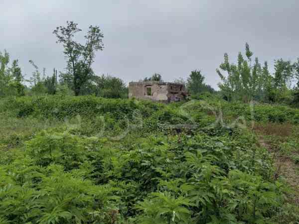 3000متر زمین مسکونی در سیاهکل