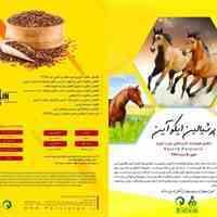 مکل امگا3 مخصوص خوراک اسب