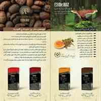 قارچ و قهوه گانودرما