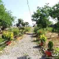 مشاوره خرید زمین در شمال توسط املاک گاما