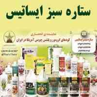 مجموعه ستاره سبز ایساتیس نماینده انحصاری کودهای گرومور و پلنتس چویس آمریکا در ایران