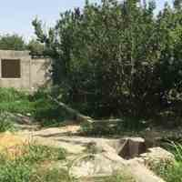 2000 متر باغ چهاردیواری در شهریار