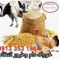 خوراک دام و طیور و ابزیان * کویر دانه یزد