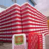 قفس پلاستیکی حمل مرغ زنده