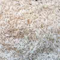 فروش برنج هاشمی اعلا تالش گیلان