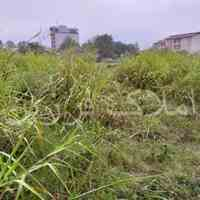 فروش زمین با کاربری مسکونی در کلاچای