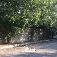 ۳۰۰۰ متر باغ خام در اسدآباد شهریار