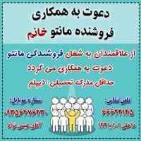 استخدام فروشنده فروشگاه ایرانیان