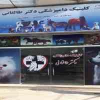 دامپزشکی در آستانه اشرفیه