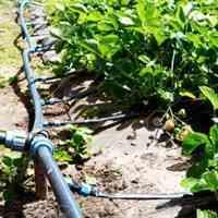 آبیاری قطره ایی باغ و ویلا