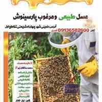 برند عسل طبیعی پارسینوش