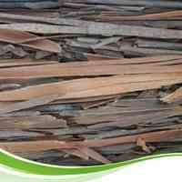 دارچین و سایر محصولات گیاهی و عطاری