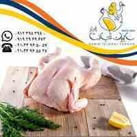فروش گوشت مرغ منجمد سابین تجارت