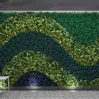 دیوار سبز greenwall