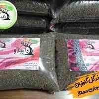 خرید اینترنتی بذر گل گاوزبان مشهد