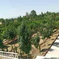 یک هتکار و 110 متر مربع در کرج ( نظر آباد )