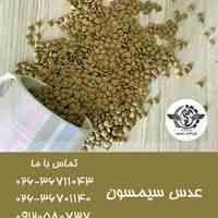 پخش عمده حبوبات و خشکبار