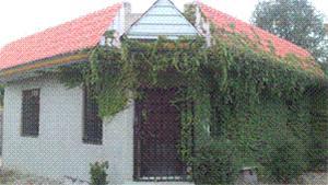 فروش باغ با بنایی رویایی